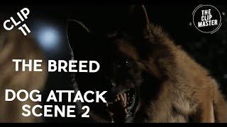 Clip # 11 - The Breed Movie Clip - Dog Attack Scene 2