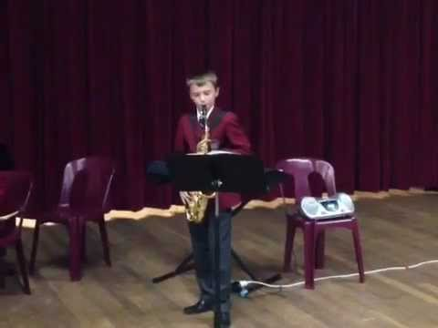 Hedwig Theme from Harry Potter - Saxophone solo