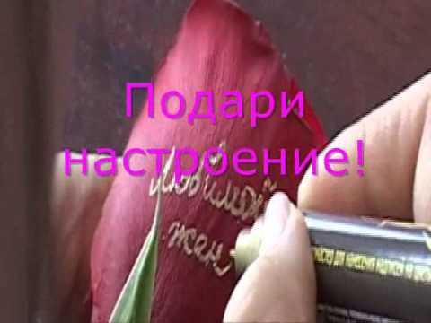 Надписи на цветах, научи цветы говорить