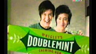 05 25 11 DOUBLEMINT  Breath Freshener Chewing Gum  DOUBLEMINT 5 Stick Mint GET TOGETHER 15s REVISED