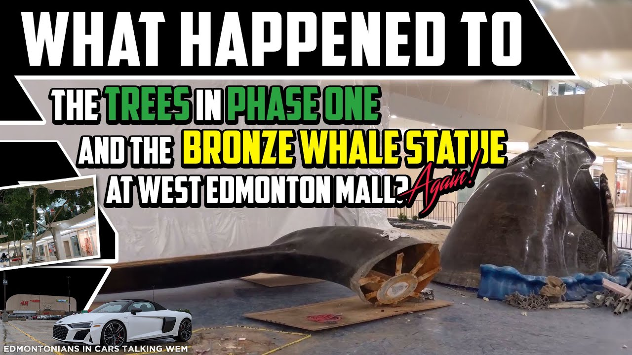 West Edmonton Mall Moved the Bronze Whale, Again! - A New Home for Open Sea -  Best Edmonton Mall