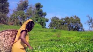 Mauwa Ryione - Yanungamya - music Video