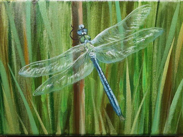 Cтрекоза Dragonfly Vugar Mamedov