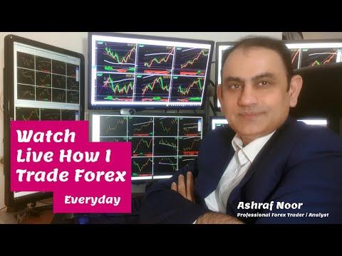 ashraf-noor,-professional-forex-trader-/-analyst---watch-forex-trading-live