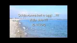 Schiavonea ieri e oggi _Video-live  del 15.02.2015
