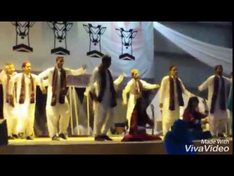 Great Sindh Culture Dance by  BUITEMS Students 2015