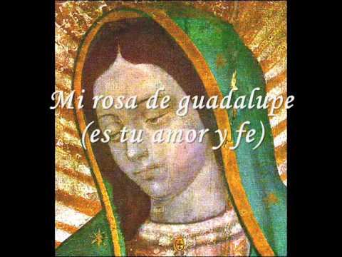Mi rosa de Guadalupe - Musica catolica