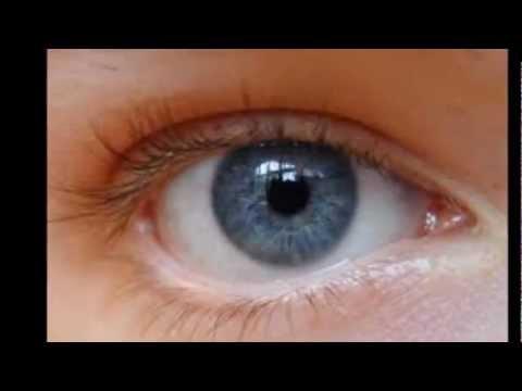 Laser Treatment Eye Floaters Cost Anexa Market