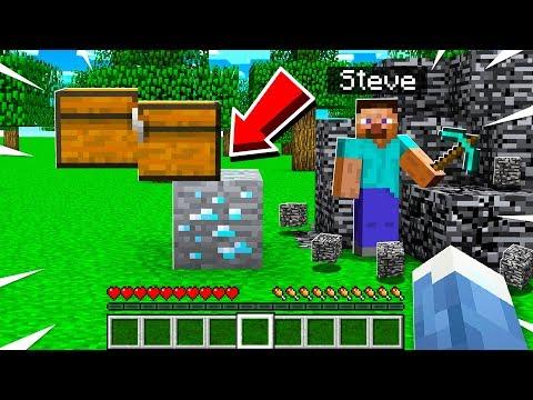 I Made A Cursed Minecraft Server...
