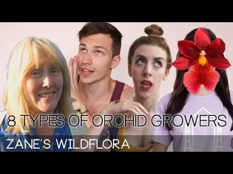 8 TYPES OF ORCHID GROWERS with Miss Orchid Girl, Astrid and Rachel from Gardening at Douentza