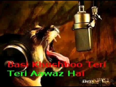 Dekha Ek Khawab To Yeh Silsile Huwe Karaoke With Lyrics