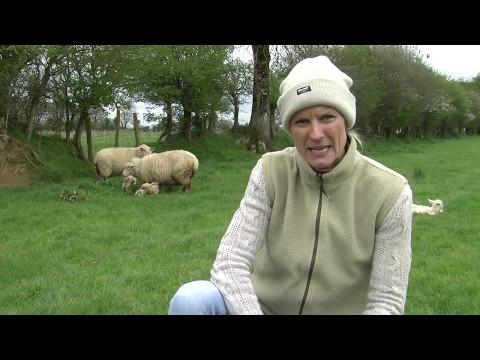 Pippa Hackett Organic Farmer