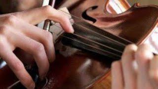 음악골든벨-'피치카토'란 무엇일까?(Mu…