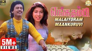 Enga Thambi Tamil Movie Songs | Malaiyoram Maankuruvi Video Song | Mano | Minmini | Ilaiyaraaja