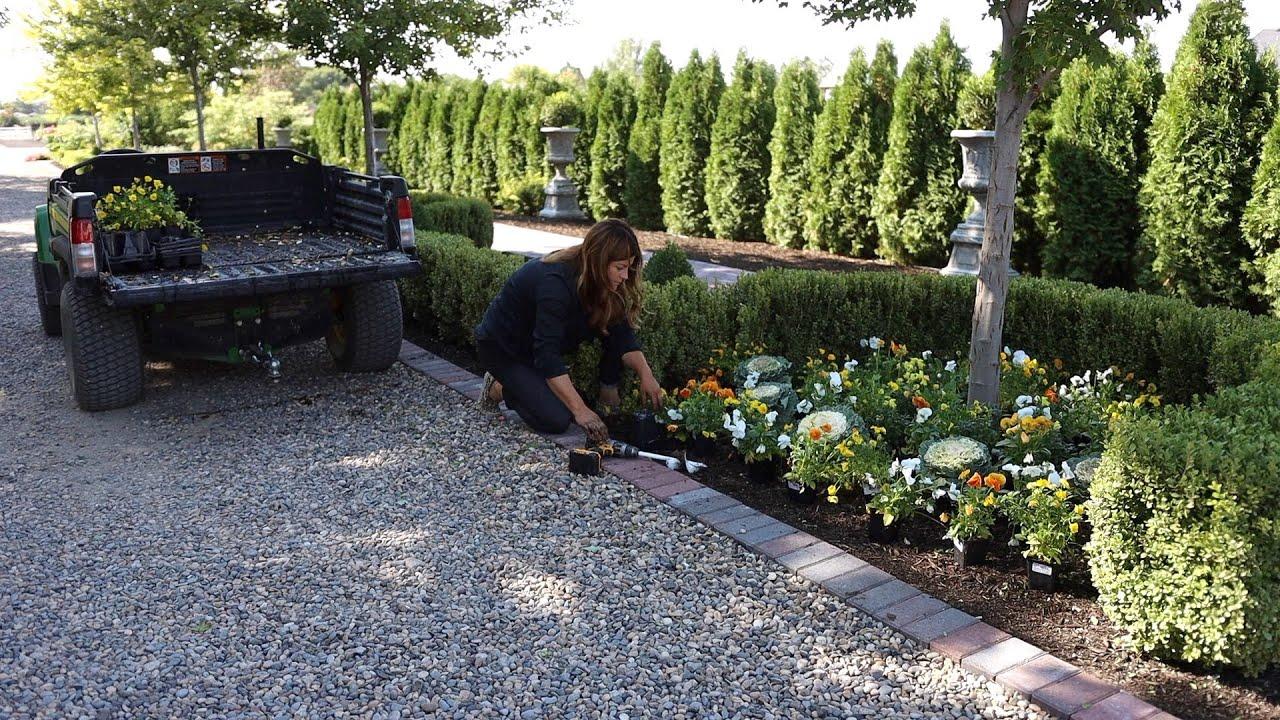 Download Fall Flowers & Pumpkins in the West Side Formal Garden! 🎃🧡🌼 // Garden Answer