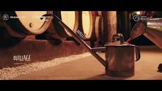 Vigneron en Bourgogne, un métier d'artisan : l'Hom...