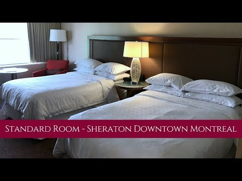 Standard Room Tour - Sheraton Downtown Montreal
