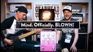 Adam Neely + EQD Rainbow Machine = MIND BLOWING!
