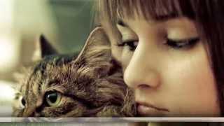 Ира Ежова - Котёнок
