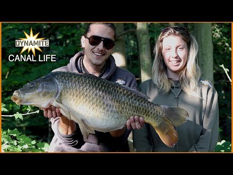 Carp Fishing - Our Session: Canal Life