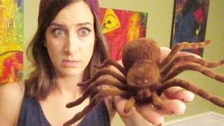 BIGGEST SPIDER EVER (Mail Vlog 11.22.13 - Day 1667)