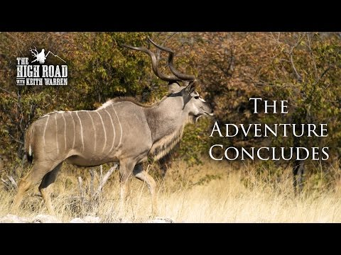Kudu, Giraffe, And Baboon Pursuit | The Adventure Concludes