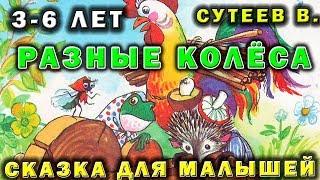 Разные колёса 👉 Сказки для малышей Сутеев В.🌟 Беби тайм