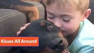 Toddler Kisses Rottweilers