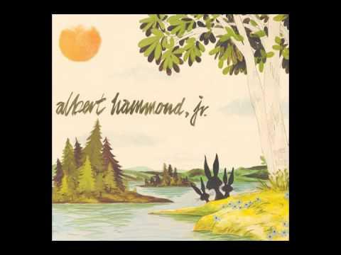 Albert Hammond Jr - In Transit