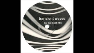 Transient Waves - Born With a Body and Fucked in the Head (Two Lone Swordsmen Remix)