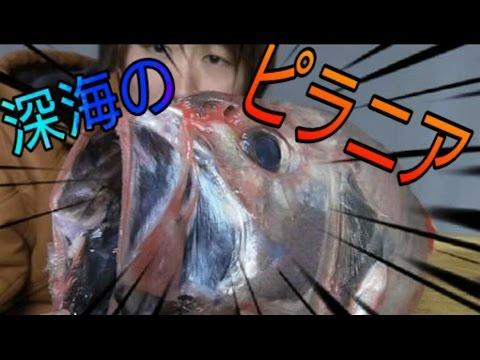 【深海魚シリーズ】ハシキンメの捌き方。【激レア】