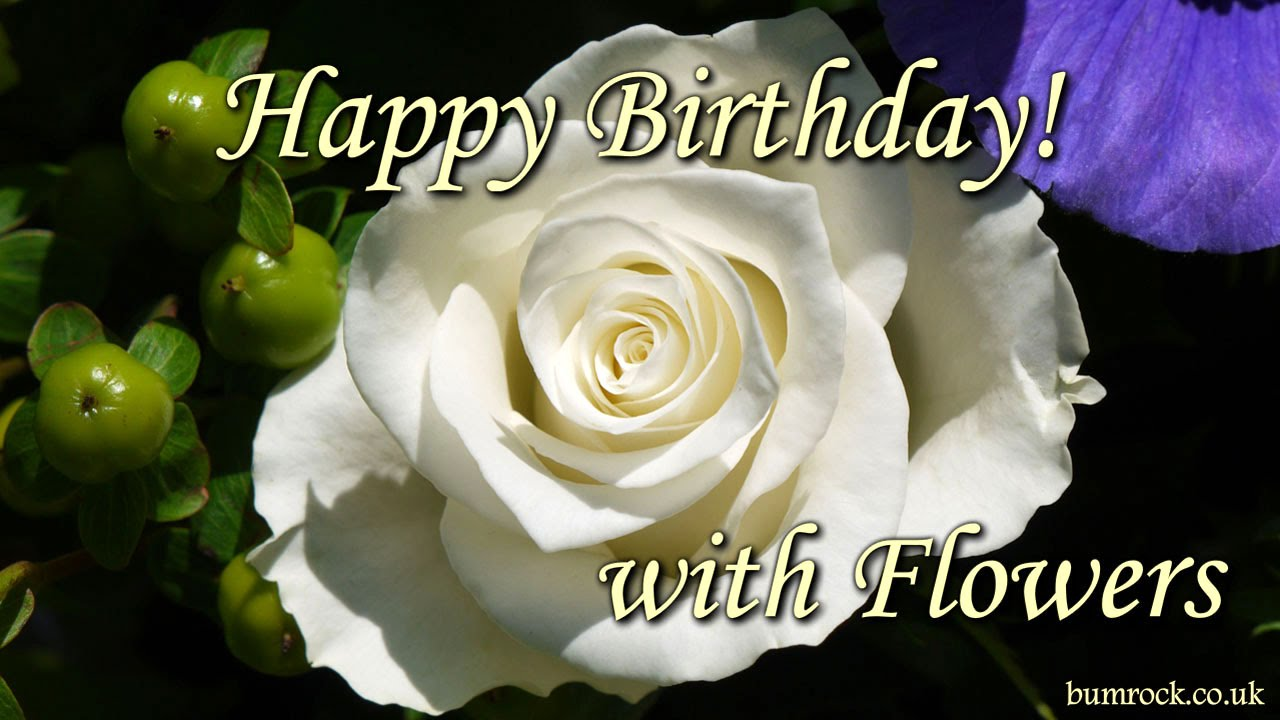 Happy birthday song with beautiful flowers pictures happy happy birthday song with beautiful flowers pictures happy birthday to you youtube izmirmasajfo