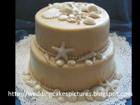 sea shell wedding cakes seashell wedding cakes 19712