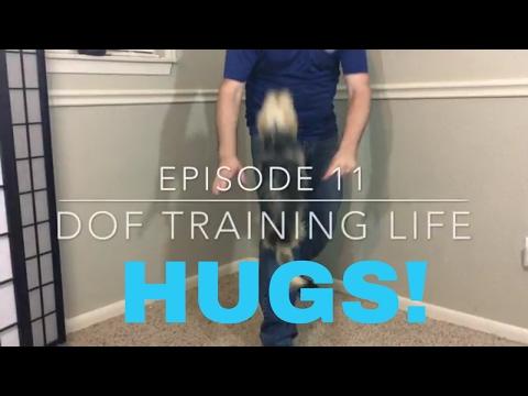 Need Some Hugs? - Dog Training Life - VLOG 11