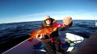 Рыбалка в Норвегии лучшее моменты - Angeln in Norwegen