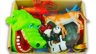 Box of Wild Zoo Animals Sea Animals  Learn Animal Names Toys For Kids