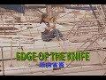 EDGE OF THE KNIFE (カラオケ) 浜田省吾