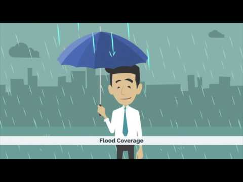 Video 4 - Have A Plan: Flood Insurance (Animated video)