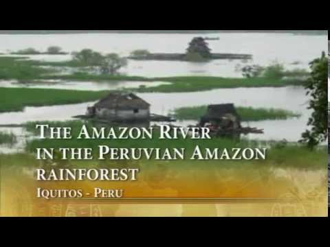 The Amazon River in the Peruvian Amazon rainforest -  Iquitos Peru