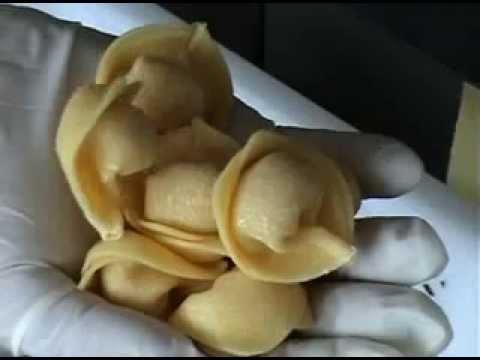 machines-pour-la-production-de-pÂtes-farcies:-cappellettatrices