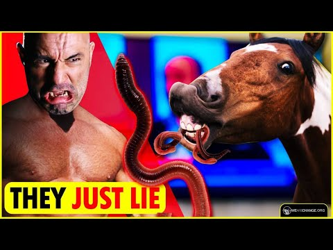 HOLY COW! Joe Rogan Just Obliterated The MSM Narrative!