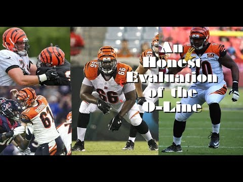 Is the Bengals