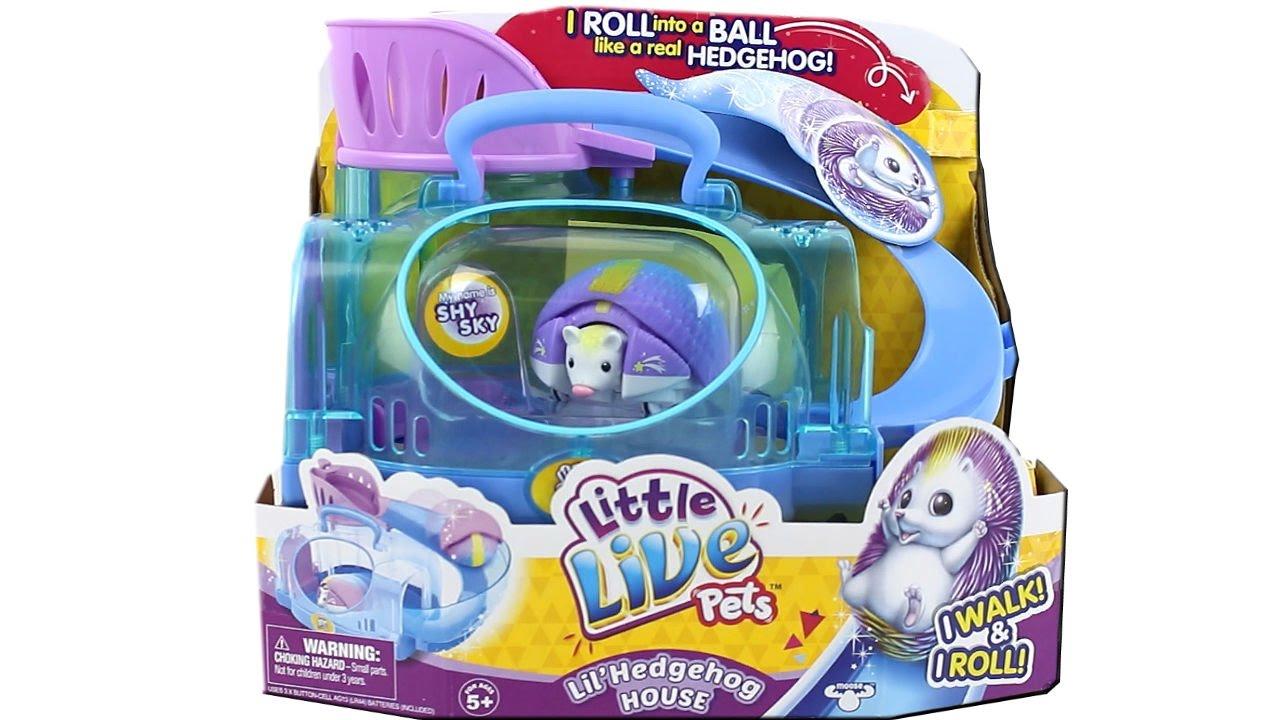 d9c1f4cbd625 Little Live Pets Lil Hedgehog House Unboxing Toy Review - YouTube