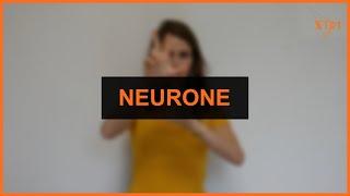 Santé - Neurone (2/2)