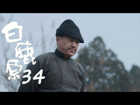 白鹿原 | White Deer 34【DVD版】(張嘉譯、秦海璐、何冰等主演)