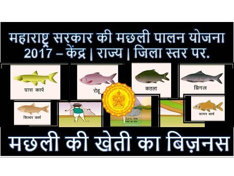 Maharashtra Govt. Fish Farming  Scheme 2019 - Central - State - District Schemes