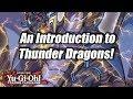 Yu-Gi-Oh! An Introduction to Thunder Dragons!