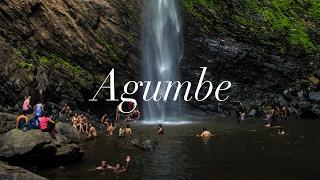 Agumbe Vibes