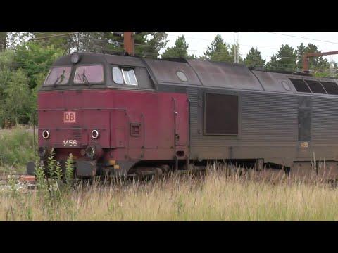 Tog i Padborg | Züge in Pattburg mit MY Nohab und MZ | DIESELSOUND UND ABGASFAHNE!