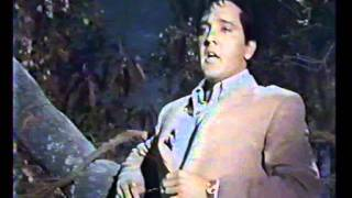Elvis Presley - The girl I never loved (legendada)